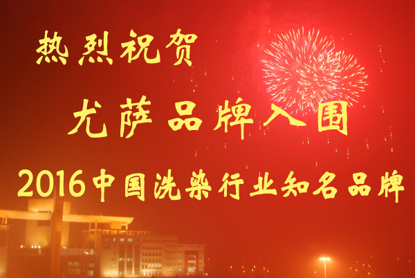 尤萨入围2016中国洗染行业知名品牌企业